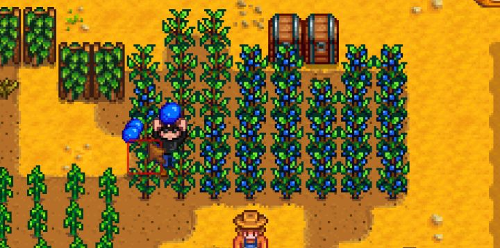 Stardew Valley Farming Guide
