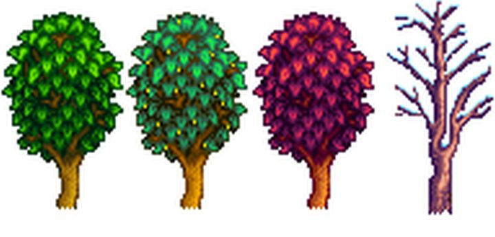 A Maple tree in all four seasons of Stardew Valley