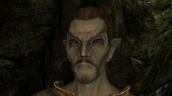 Skyrim's Dark Elf Race