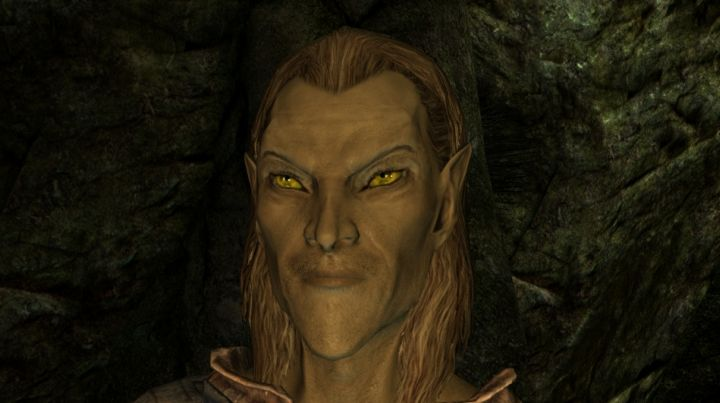 Skyrim's High Elf Race