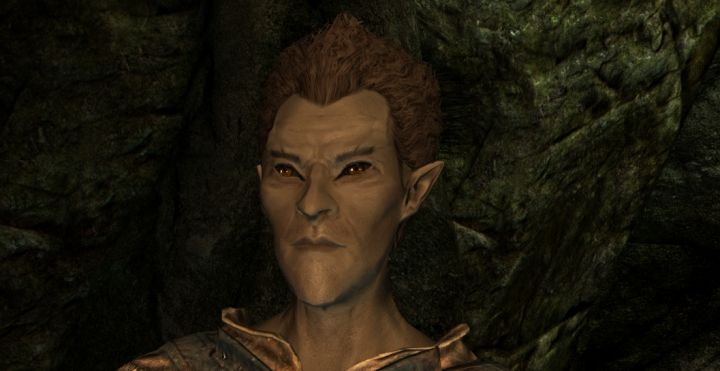 Skyrim's Wood Elf Race